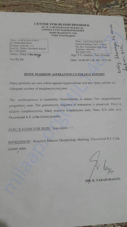 Bone marrow aspiration cytology report