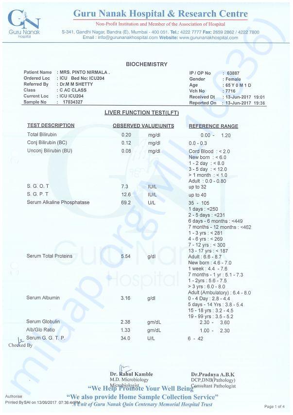 LFT Report